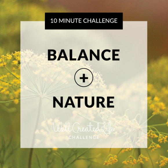 WellCreated-balance-nature